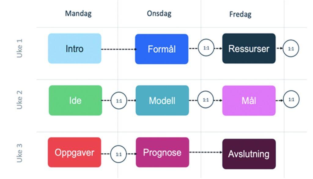 illustrasjon viser prosessen i et inkubatorprogram